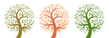 Tree Icon Set. Life Logo. Plant Insignia. Environment Emblem. Nature Symbol. Organic Icon. Vector Illustration