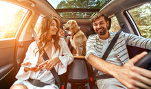 The Whole Family Is Driving For The Weekend. Mom And Dad With Their Daughter And A Labrador Dog Are Sitting In The Car. Leisure, Travel, Tourism.