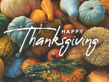 Happy Thanksgiving Handwritten Script Text With Pumpkins, Squash And Gourds Colorful Background Texture
