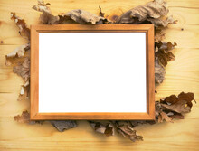 Bracken (Pteris). Floral Still Life On A Polished Wooden Background With A Signature Frame