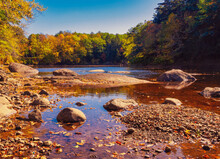 River With Clean Clear Water Flowing Through A Forest Of Autumn Colored Leaves.