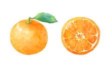みずみずしい新鮮なみかんのセット 葉 半分 甘い熟したフルーツ