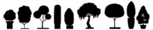 Forest Trees Silhouettes. Tree Silhouettes, Whole Vector Black Tree With Roots. Ree, Silhouette, Botanical, Ecology, Leaf, Nature, Vector Eps 10