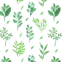 Green Leaves Pattern Seamless Background. Seamless Pattern With Botanical Green Leaves Watercolor.