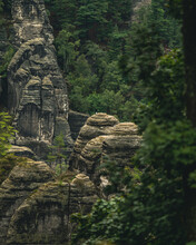Rocks Looking Like Ancient Ruins In The Jungle Between The Trees