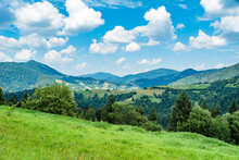 A Field Covered With Grass Amid Beautiful Mountains Covered With Forests On A Warm Summer Day. Green Young Mountains.
