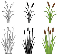 Cattail Reeds And Marsh Grass Clipart Set - Outline, Silhouette And Color