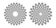 Set Of Abstract Geometric Circle Patterns.
