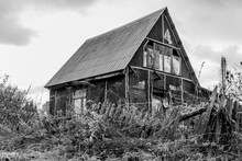 Black And White Atmospheric Autumn Photography Of An Old Abandoned Wooden Village House Behind A Broken Fence Overgrown With Wild Grass