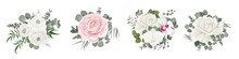 Vector Flower Set. White And Pink Roses, Orchids, Ranunculus, Green Plants And Leaves, Eucalyptus. Flowers And Plants On A White Background
