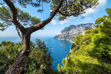 Summer Vacation On Capri Island, Naples, Italy