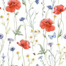 Beautiful Vector Seamless Floral Pattern With Hand Drawn Watercolor Gentle Wild Field Flowers Cornflower Poppy. Stock Illuistration.
