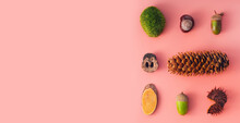 Autumn Natural Materials - Cone, Moss, Chestnut, Acorn, Sawn Wood, Walnut Shell - In The Form Of A Square, Conceptual Flatlay Wide Banner On A Pink Background