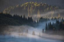 Autumn Morning In Apuseni Mountains