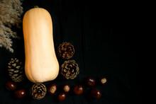 Butternut Party, Carrotes, Pommes De Terre, Pommes De Pin Et Marrons