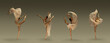 canvas print picture - Collage of portraits of one young beautiful female ballet dancer dancing with fabric, cloth isolated on grey background.