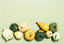 Autumn Frame From Various Decorative Pumpkins On Green Fall Harvest Small Pumpkin