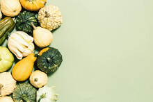 Pumpkin, Gourd, Squash Of Different Shapes And Colors Top View On Green Paper. Autumn Flat Lay