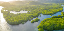 Anavilhanas Archipelago, Flooded Amazonia Forest In Negro River, Amazonas, Brazil. Aerial Drone View.