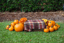 An Outdoor Set Up Of A Crate With A Fall Autumn Plaid Brown Blanket And Lots Of Bright Orange Pumpkins And Flowers For Fall Decor Or Pictures