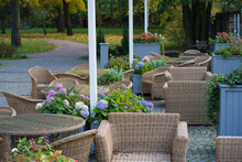 Empty Cafe Terrace In Autumn Park: Comfortable Wicker Furniture On Hotel Patio With View To Woods And Blooming Hydrangea Flowers In Pots. Garden Restaurant For Chilling And Relaxing Outdoors In Nature
