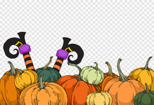 Witch Legs Coming Outside Group Of Pumpkins In Different Color Isolated On Png Or Transparent Background,Halloween Party Banner,element Template For Poster,brochures,online Advertising ,vector