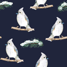 Seamless Pattern With Watercolor Birds And Spruce Branches On A Dark Blue Background. Image For Winter Design, Digital Paper, Wrapping Paper