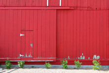 Delightful Bright Red Country Farm Barn Wall And Door With White Trim And Greenery