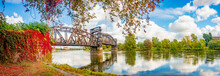 Panoramic View Over An Old Railway Metal Rusty Bridge In Red Ivy Leaves Over Elbe River In Downtown Of Magdeburg In Autumn Colors And Sunny Day, Germany.