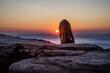Pies na skałach podczas wschodu słońca