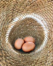 Three Brown Eggs In A Straw Hat