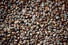 Close Up Of Freshly Roasted Coffee Beans