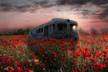 Locomotive In The Poppy Field