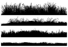 Isolated Vector Silhouettes Of Grass-covered Ground. High Detail Reeds, Dry Grass, High Grass And Low Grass.