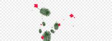 Pink Flower Background Transparent Vector. Monstera Surf Illustration. Green Leaf. Brazil Pattern. Yellow Holiday Texture.