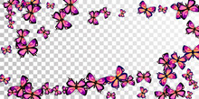 Tropical Purple Butterflies Flying Vector Background. Summer Pretty Moths. Fancy Butterflies Flying Girly Illustration. Delicate Wings Insects Graphic Design. Nature Creatures.