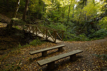Wooden Benches In National Park PL