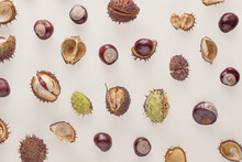 Natural Autumn Pattern Made Of Fallen Horse Chestnut Glossy Mahogany-bright Seeds And Spiky Green And Brown Husks Isolated On Pastel Beige Background. Minimal Autumn Flat Lay. Fall Texture Concept.