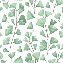 Vector Illustration Ginkgo Biloba Leaves. Seamless Pattern With Leaves. Herbal Alternative Medical Care Anti-oxidant Leaves In Watercolor Style.