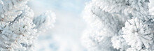 Beautiful Fir Tree Branches Covered In Snow. Christmas Celebration Concept. Soft Focus