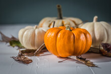 White And Orange Pumpkins With Leaves Surrounded Them On A White Surface And Robin's Egg Color Background.