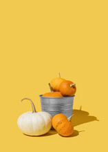 Gray Silver Metallic Pail And Halloween Colorful Pumpkins Against Yellow Background. Autumn, Thanksgiving Minimal, Vertical Concept
