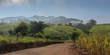 Scenic Rural Panorama With Dirt Road And Fog In Agricultural Mountain Valley Near Chiang Dao, Chiang Mai, Thailand