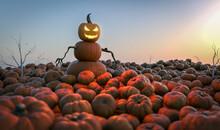Kürbismann – Gruselige Halloween Figur Auf Kürbisfeld