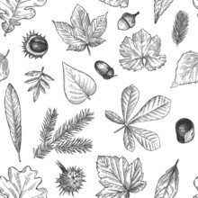 Autumn Leaves Seamless Pattern. Hand Drawn Fallen Leaf, Acorns, Cones Print For Textile. Wallpapers, Gift Wrap Or Scrapbook Vector Texture