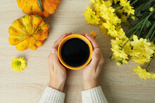 Female Hands Hold Cup Of Coffee On Wooden Background With Pumpkins And Chrysanthemums