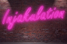 Neon Injakulation (no Ejaculation, In German Kein Samenerguss) Lettering On Brick Wall At Night