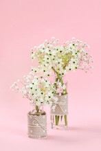 Spring Bouquets With Arabian Star Flower (ornithogalum Arabicum) And Gypsophila Paniculata.