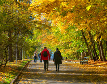 Beautiful Autumn Landscape With People In The Park, Yellow Trees And The Sun. Colorful Foliage In The Park. Autumn Natural Background.