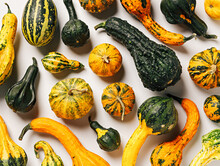 Fall Pattern Composition With Many Pumpkins And Gourds On Bright White Background. Creative Autumn Composition. Minimal Vegetable Food Texture. Flat Lay.